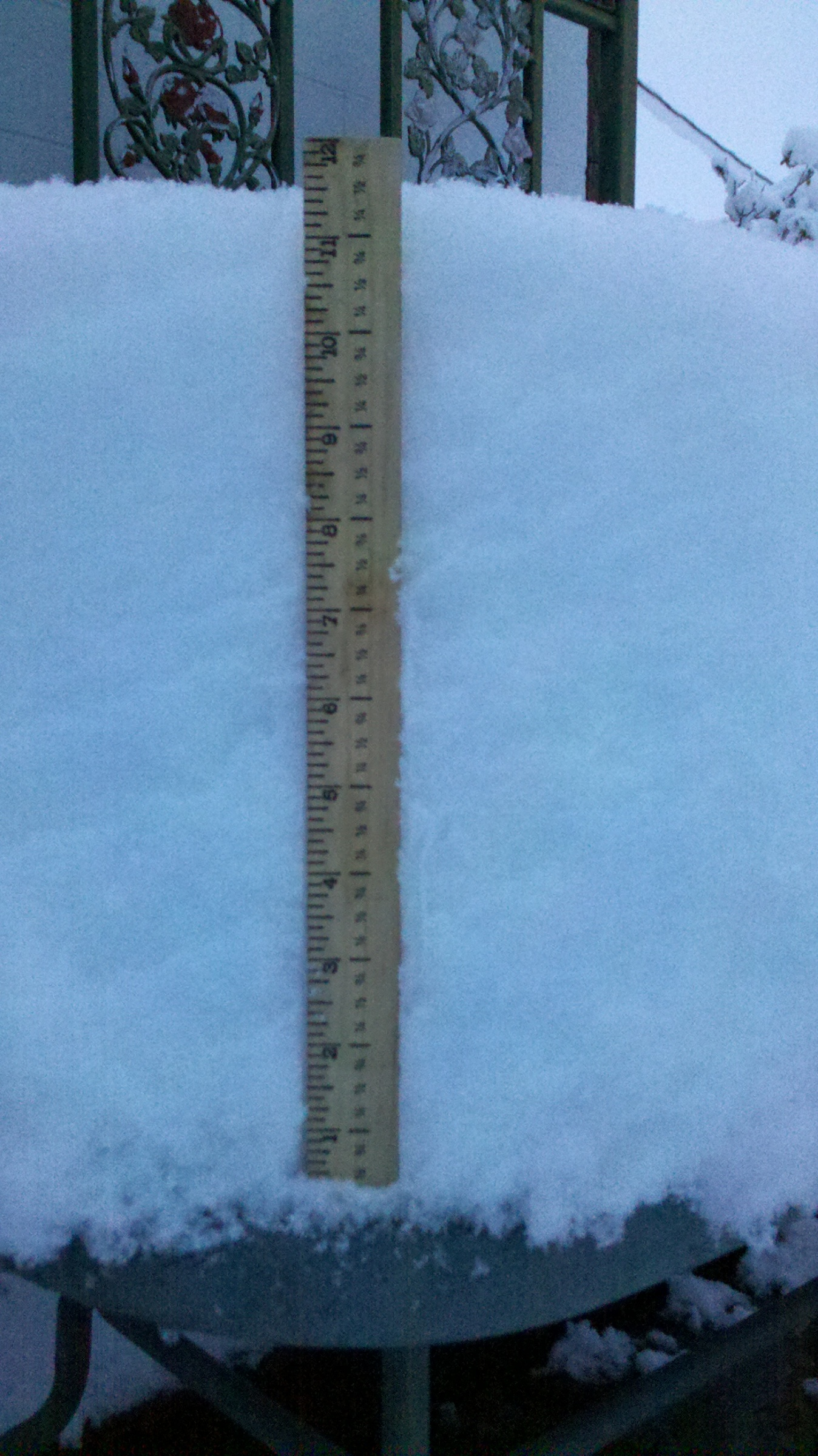 Click image for larger version  Name:1 foot of snow.jpg Views:70 Size:947.4 KB ID:9974