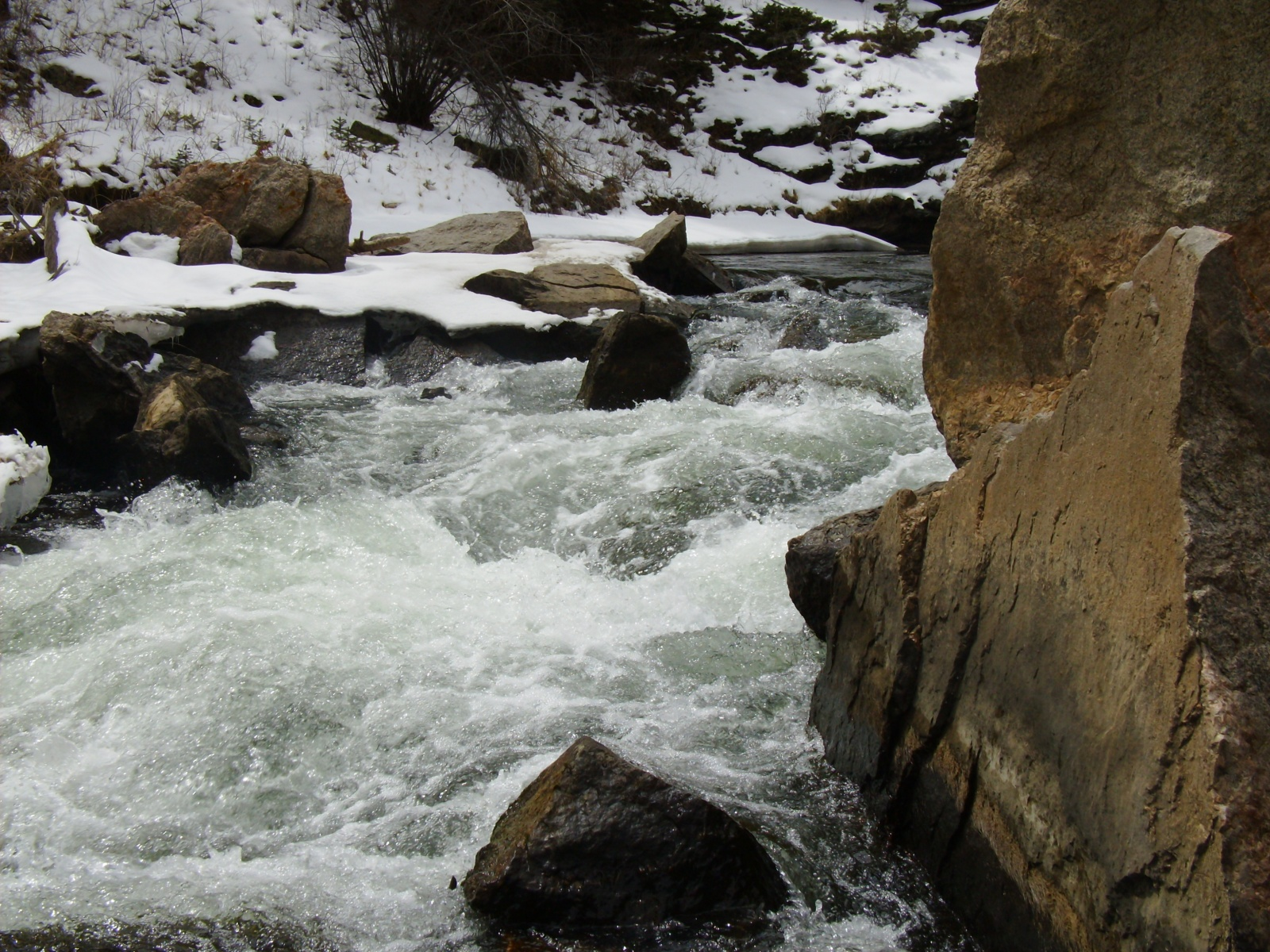 Click image for larger version  Name:11 Mile, 153 cfs 009.jpg Views:126 Size:773.3 KB ID:1189