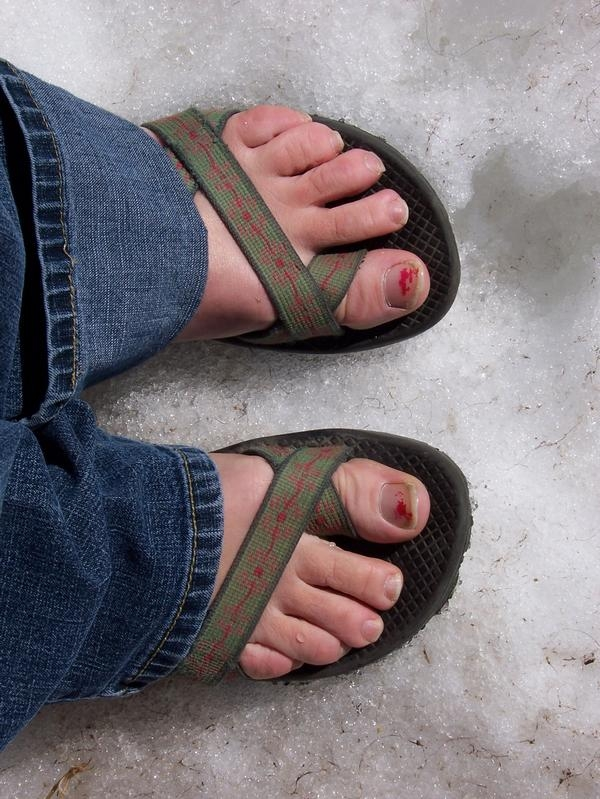 Click image for larger version  Name:chacos.JPG Views:97 Size:271.1 KB ID:1291