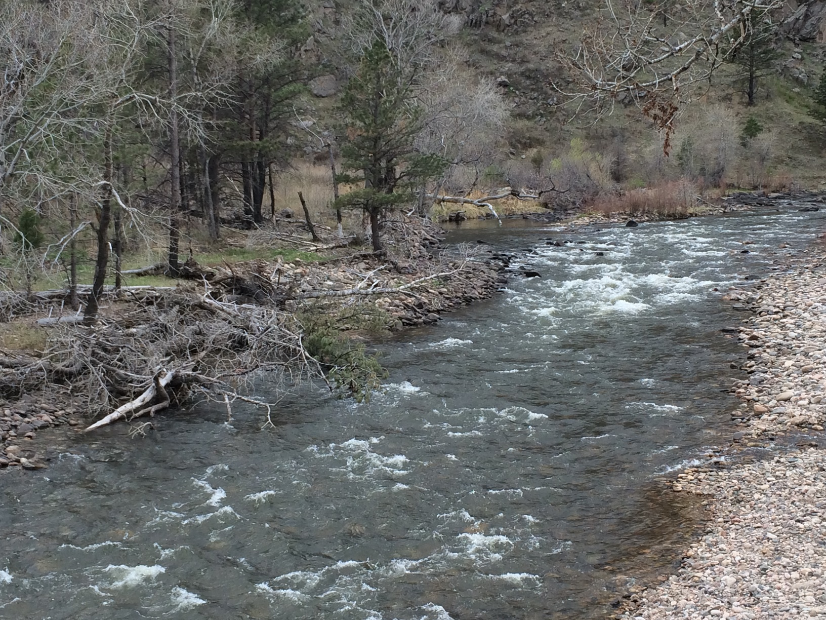 Click image for larger version  Name:Filter Bend Below Upper Picnic Area.JPG Views:150 Size:997.6 KB ID:9706