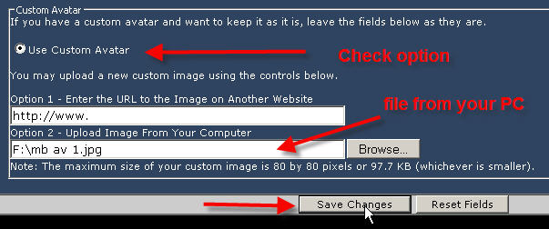 Click image for larger version  Name:mb av 3.jpg Views:181 Size:40.3 KB ID:7