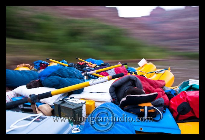Click image for larger version  Name:nightfloat longear.jpg Views:139 Size:58.6 KB ID:10446