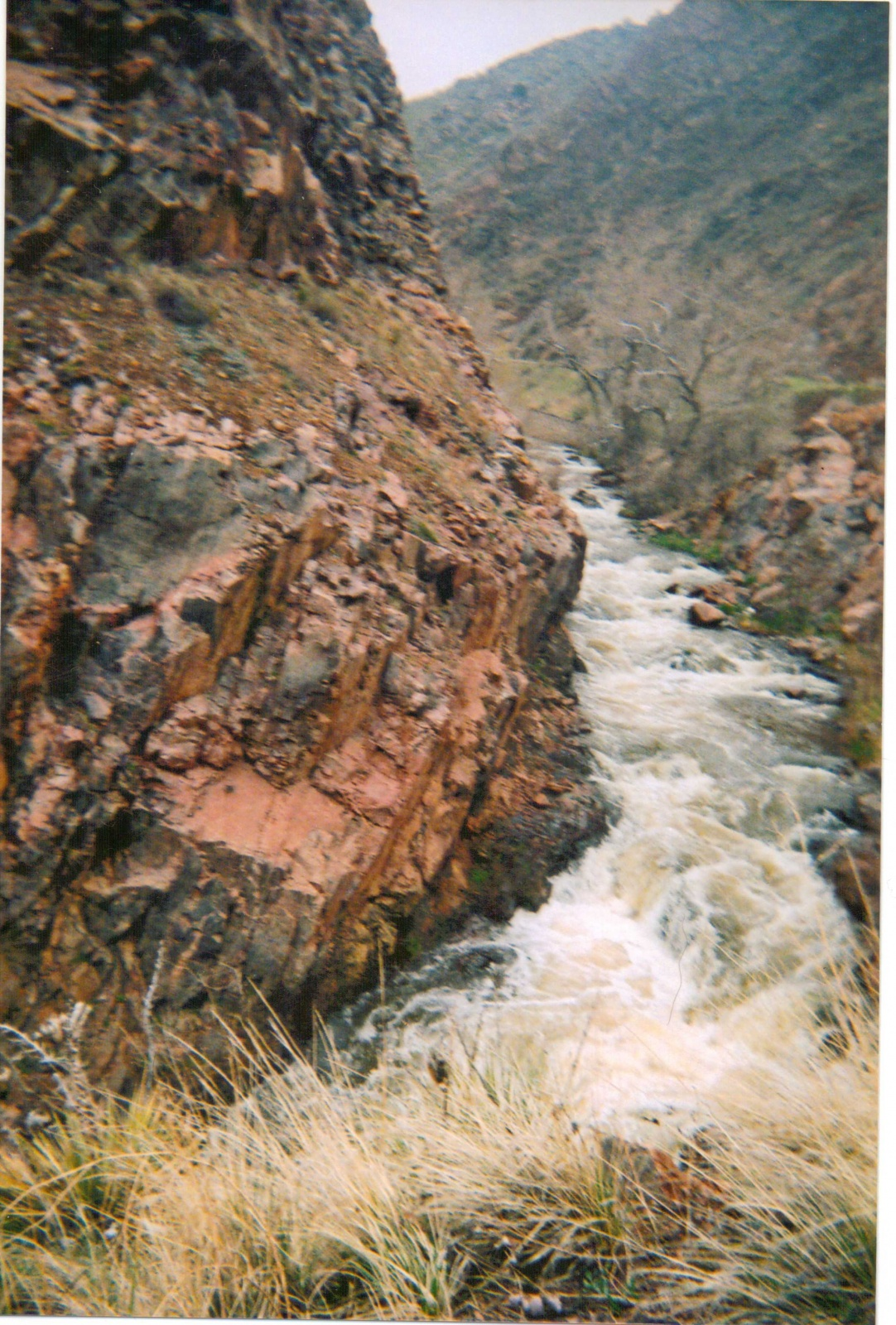 Click image for larger version  Name:No Fun lead in Bear creek.jpg Views:99 Size:713.5 KB ID:2336