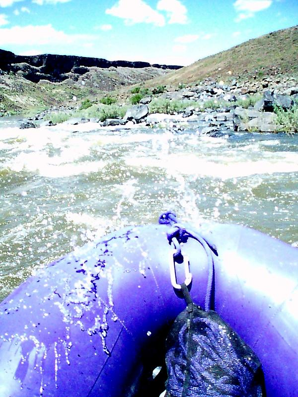 Click image for larger version  Name:Owyhee 2010 (7).JPG Views:145 Size:115.2 KB ID:2780