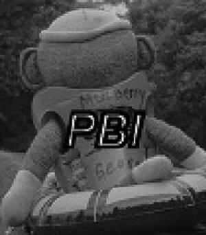 Click image for larger version  Name:pBI.jpg Views:133 Size:36.0 KB ID:9352