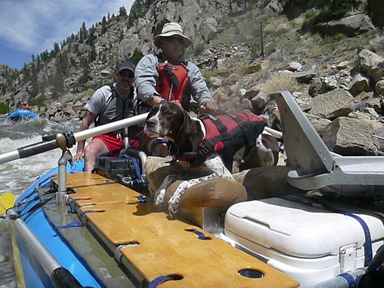 Click image for larger version  Name:Porter on Raft.jpg Views:251 Size:63.2 KB ID:7973