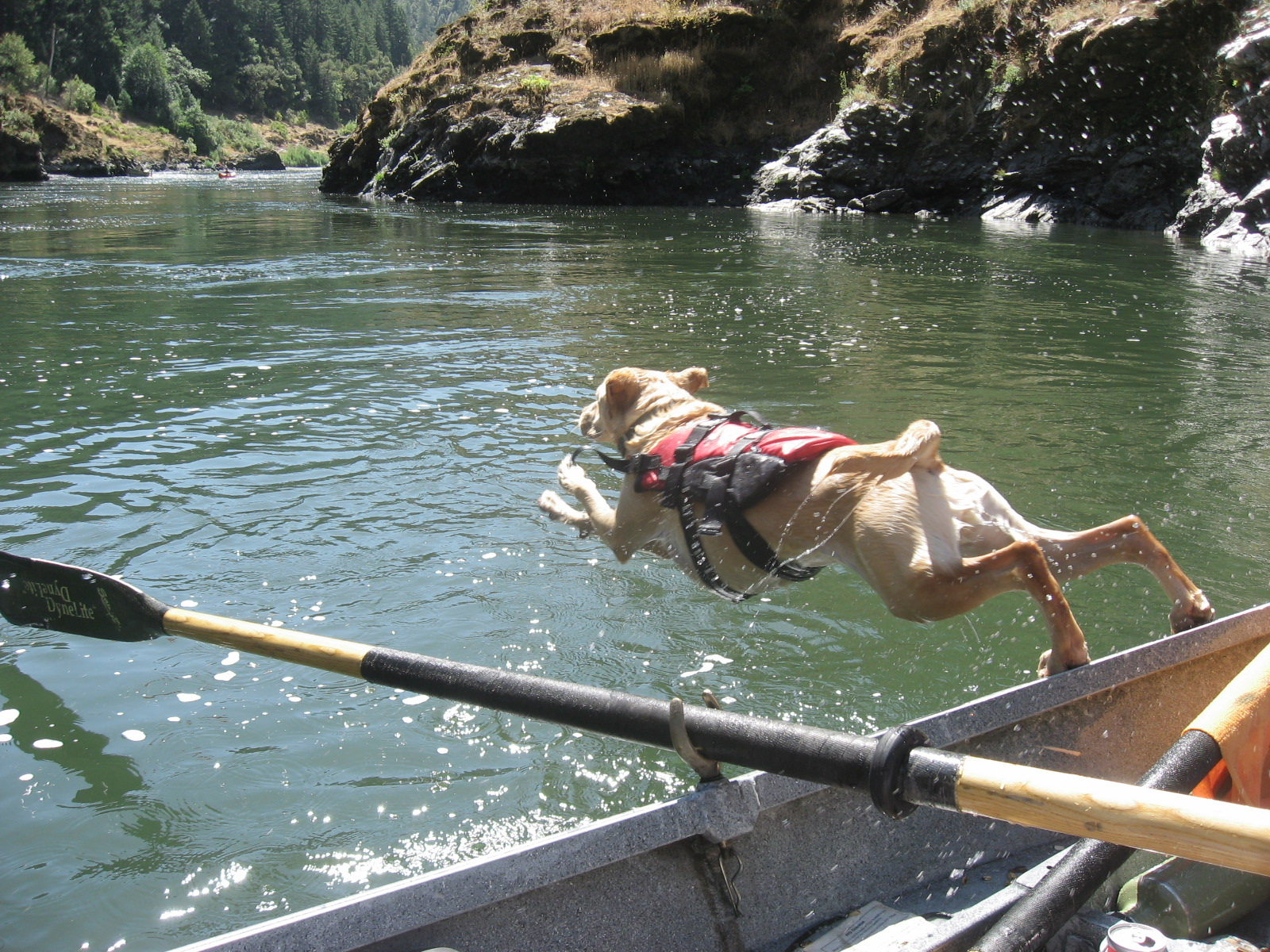 Click image for larger version  Name:Rogue River 629.jpg Views:125 Size:858.9 KB ID:2504