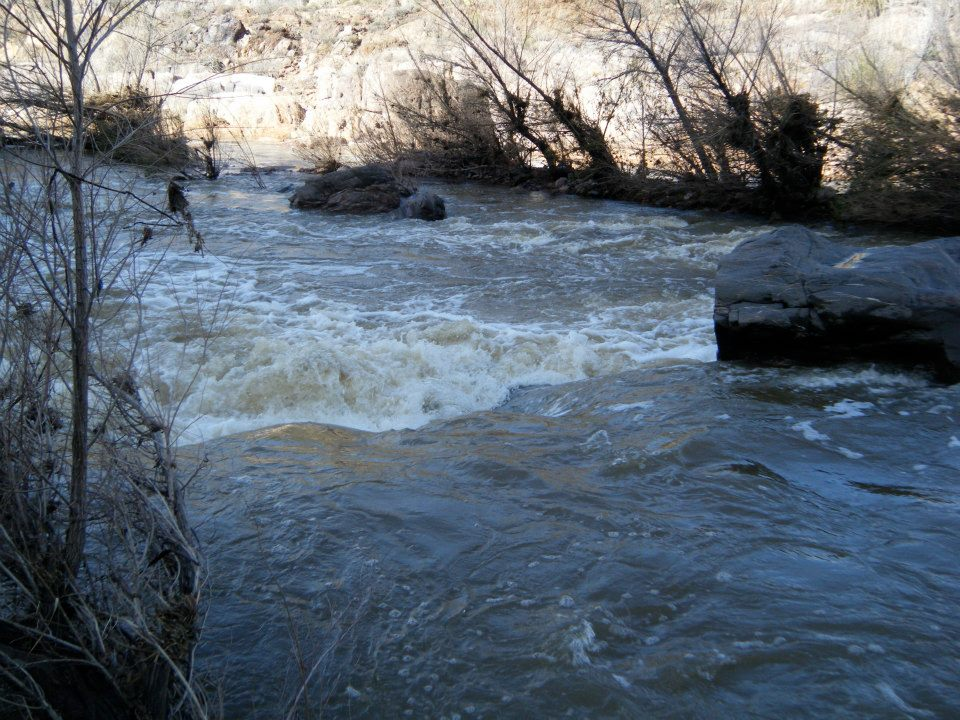 Click image for larger version  Name:tonto creek.jpg Views:177 Size:163.1 KB ID:9256