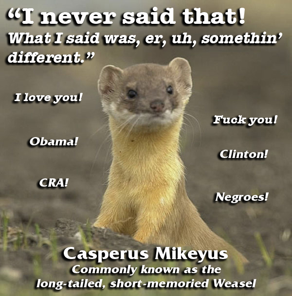 Click image for larger version  Name:weasel.jpg Views:132 Size:212.4 KB ID:1181